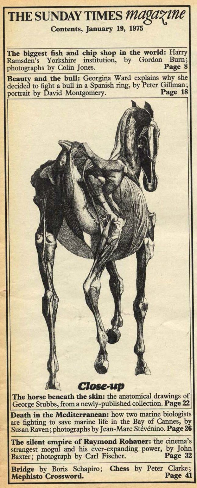 George Stubbs Anatomy Of The Horse Gallery - human body anatomy